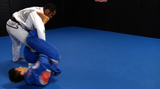 Cobrinha BJJ 7 Volume DVD Set with Rubens Charles - Budovideos