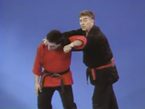 The Kenpo Jujutsu Connection 4 DVD Set by David German - Budovideos