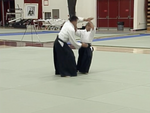 Aiki Expo 2005 Demonstrations Part 2 DVD (Preowned) - Budovideos