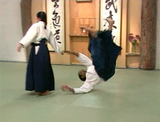 Aikido Ukemi 1: Meeting the Mat DVD by Donovan Waite (Preowned) - Budovideos