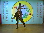 Southern Praying Mantis Kung Fu Vol 3: Butterfly Knives DVD by Gin Foon Mark (Preowned) - Budovideos