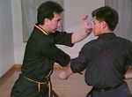 Tiger Claw Kung Fu 7 DVD Set by Tak Wah Eng (Preowned) - Budovideos