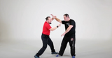 DSDWS Dulas Self Defense Whistle Stick DVD by Ado Dulas - Budovideos