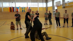 RMA Systema SV Germany 2018 Seminar Vol 2 with Dmitry Skogorev (On Demand) - Budovideos