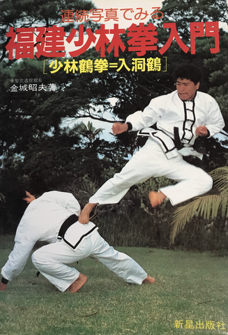 Intro to Fukken Shorin Ken Chinese Martial Arts Book (Preowned) - Budovideos Inc