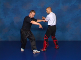 Combat Sanshou: The Punishing Chinese Fighting Art 6 DVD Set by Wim Demeere (Preowned) - Budovideos