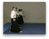 Aikido Kobayashi Ryu with Giampietro Savegnago (On Demand) - Budovideos