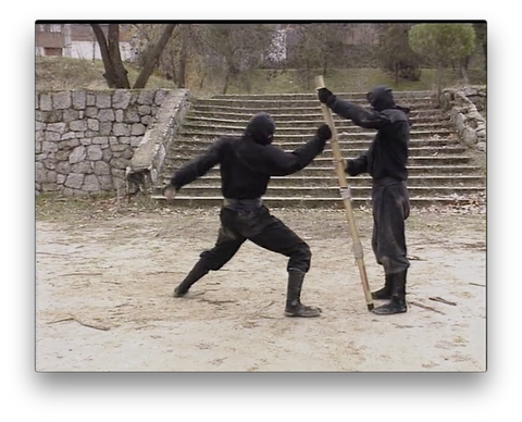 Koga Ryu Ninjutsu Empty Hands by Juan Hombre (On Demand)