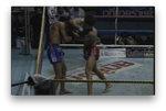 The Elbows of Muay Thai Boran by Marco De Cesaris (On Demand) - Budovideos