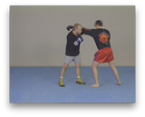 Combat Submission Wrestling Vol 2 with Erik Paulson (On Demand) - Budovideos