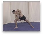 Brazilian Jiu Jitsu Conditioning with the Vacirca Brothers (On Demand) - Budovideos Inc