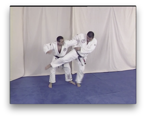 Brazilian Jiu Jitsu Volume 1 with the Vacirca Brothers (On Demand)