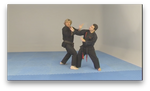 Free Style Kenpo by Larry Tatum (On Demand) - Budovideos