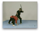Extreme Kenpo by Larry Tatum (On Demand) - Budovideos