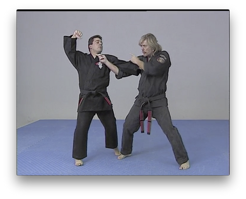 Kenpo Ed Parker's System by Larry Tatum (On Demand)