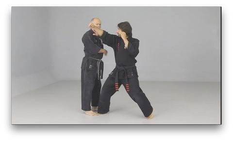 Kenpo Golden Rules by Richard Planas (On Demand) - Budovideos
