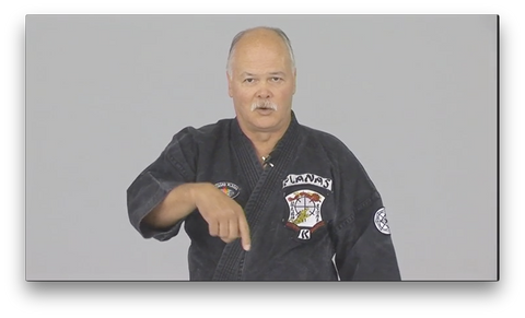 Kenpo Golden Rules by Richard Planas (On Demand)