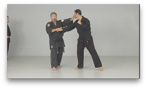 Kosho Ryu Kenpo by Bruce Juchnik (On Demand)