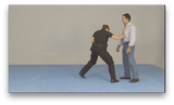 American Kenpo Karate Police Instruction by Carina Salvo (On Demand) - Budovideos