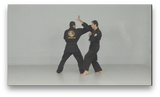 Fu Shih Kenpo with Raul Gutierrez (On Demand) - Budovideos
