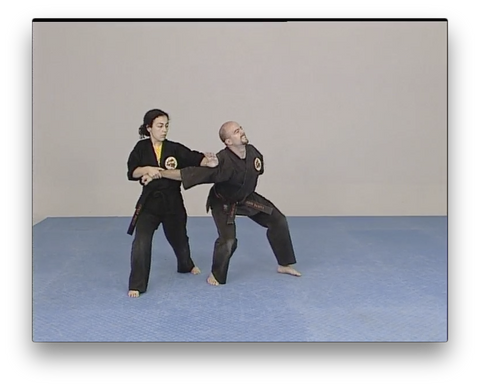 Kara-Ho Kempo Karate by Sam Kuoha (On Demand) - Budovideos