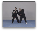 American Kenpo Karate by Juan Jose Negreira (On Demand) - Budovideos