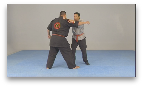 Kajukenbo Wun Hop Kuen Do by Al Dacascos (On Demand)