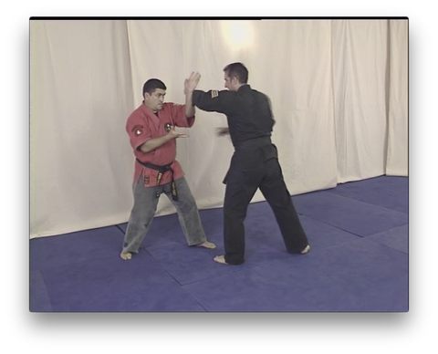 Kajukenbo Vol 3 by Angel Garcia (On Demand) - Budovideos