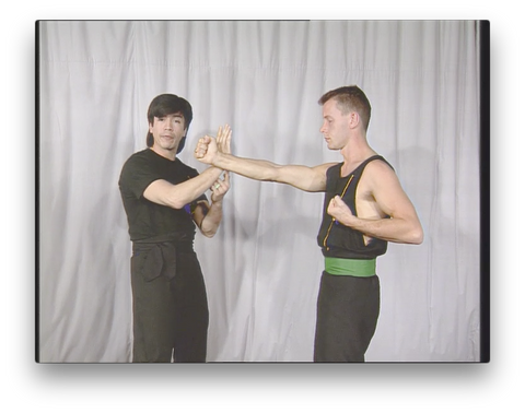 Wing Chun Kung Fu Concepts and priciples by Randy Williams (On Demand)