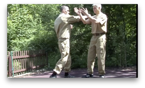 Russian Martial Art Systema SV Training Program Vol1 by Dmitri Skogorev (On Demand)