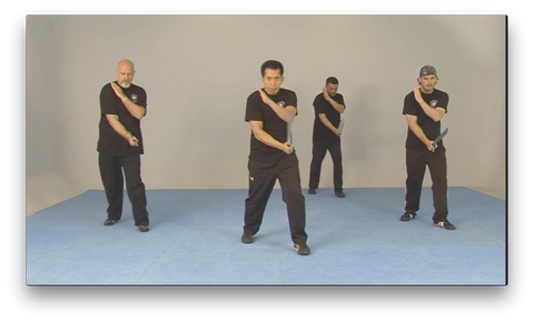 Lameco Eskrima Single Sword by Dino Flores (On Demand)