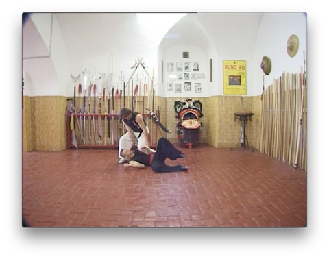 Wing Chun Traditional vol 2 by Paolo Cangelosi (On Demand)