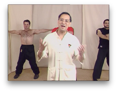 Wing Tsun Right or Wrong? by Leung Ting (On Demand) - Budovideos