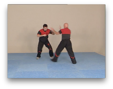 WingTsun Combat Program by Victor Gutierrez (On Demand)
