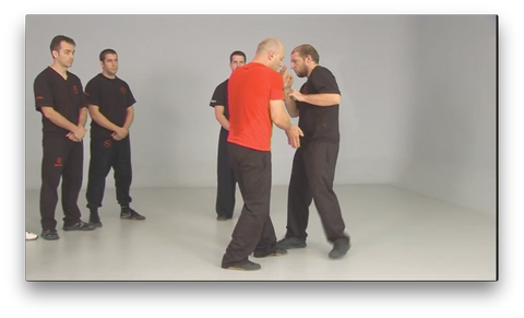 Wing Tsun Taows Academy by Salvador Sánchez (On Demand) - Budovideos