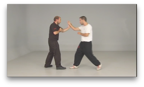 Wing Tsun Taows Academy by Salvador Sánchez (On Demand)