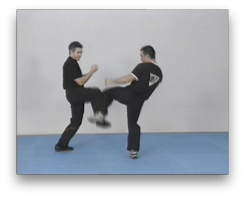WingTsun Chi Sao Vol2 by Victor Gutierrez (On Demand)