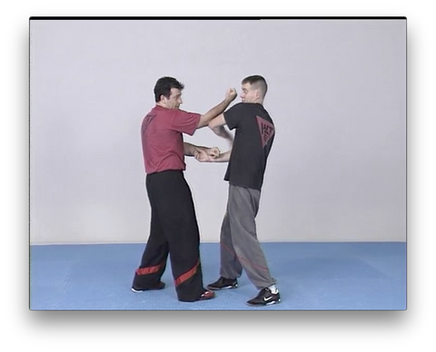 WingTsun Chi Sao Vol1 by Victor Gutierrez (On Demand)