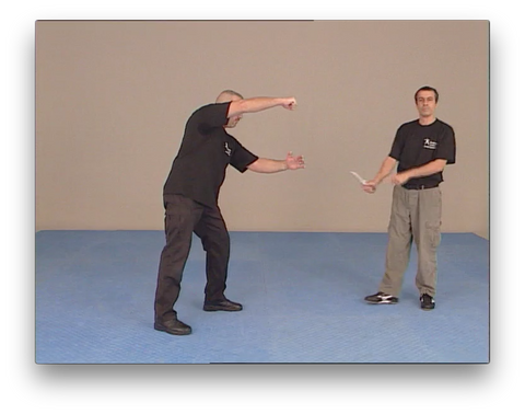 Kapap Lotar Krav Maga Panim el Panim by Avi Nardia (On Demand)