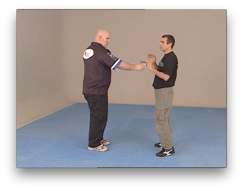 Kapap Lotar Krav Maga Gun Disarming Keys by Avi Nardia (On Demand)