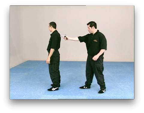 Kapap Lotar Krav Maga by Avi Nardia (On Demand)