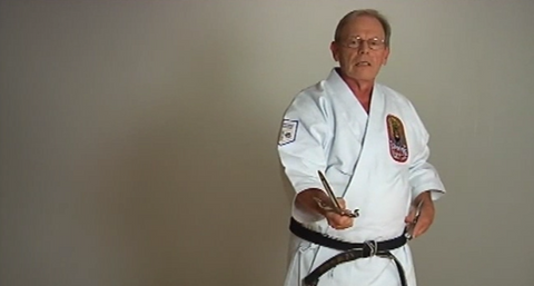 Insights into Okinawan Kobudo Vol-2 by Nick Adler (On Demand) - Budovideos