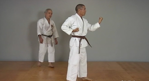 Okinawan Karate Shorin Ryu Vol-1 by Eihachi Ota (On Demand) - Budovideos