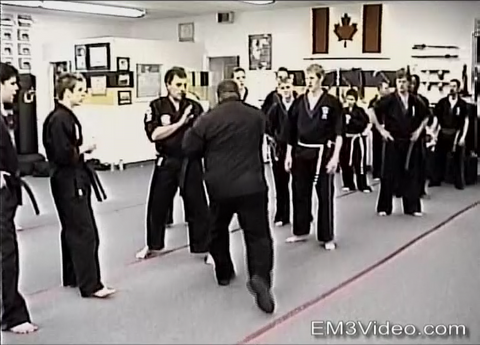 Kenpo Fusion Seminar Volume 1 by Frank Trejo (On Demand)
