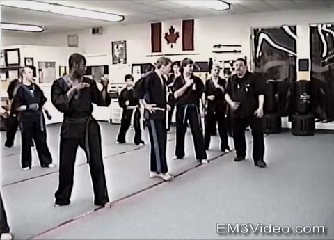 Kenpo Fusion Seminar Volume 2 by Frank Trejo (On Demand)