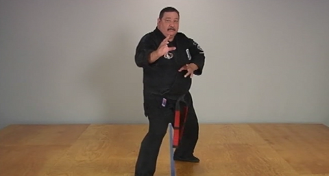 ABC's of Kenpo Karate Volume 1 by Frank Trejo (On Demand) - Budovideos