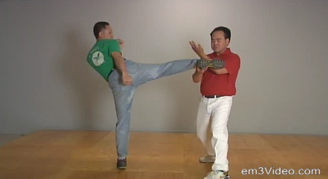 Fundamental Wing Chun Kung Fu by Allan Lee (On Demand) - Budovideos
