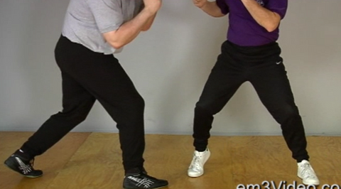 Masterclass Jeet Kune Do Vol-2 by Chris Kent (On Demand)