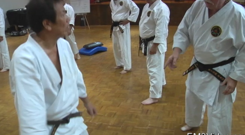 Koshi Shorin Ryu Karate Seminar Vol-1 by Eihachi Ota (On Demand)