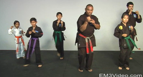 Masterclass Kenpo Volume 1 Kenpo Basics by Robert Temple (On Demand)
